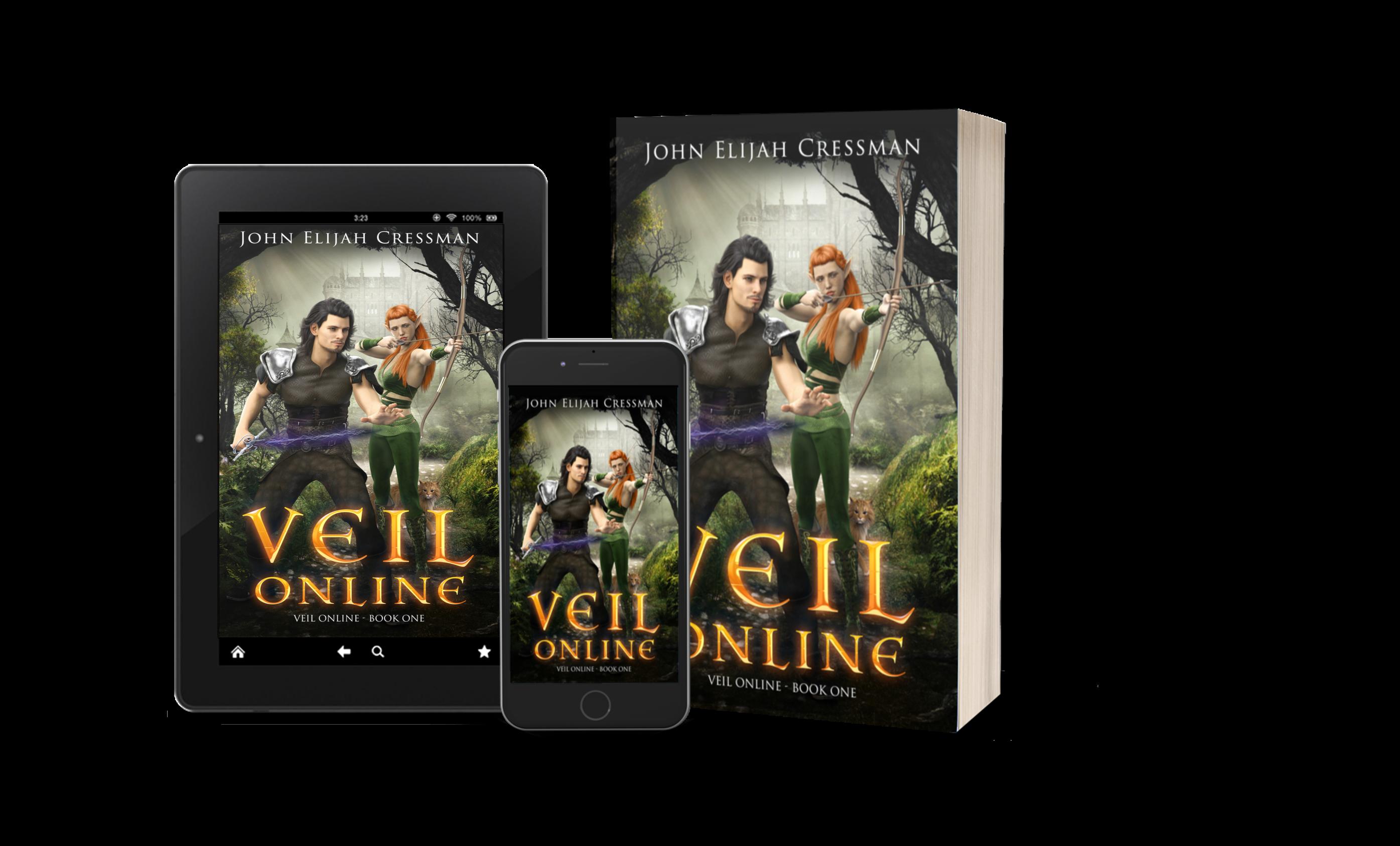 VEIL Online – Book 1 Summary