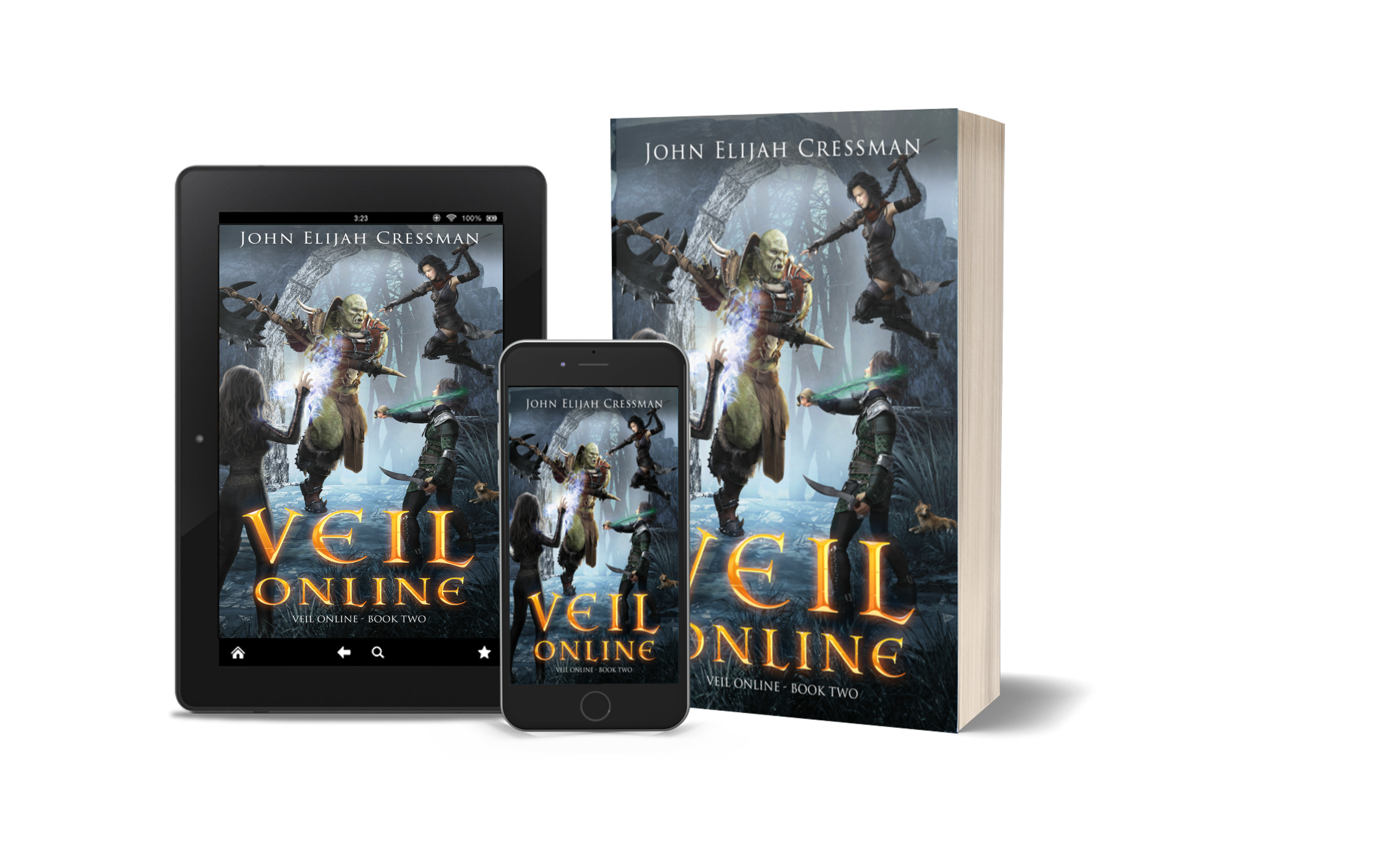 VEIL Online – Book 2 Summary